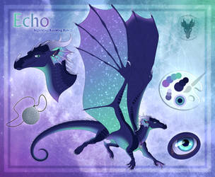 Echo Reference Sheet 2018 by xTheDragonRebornx