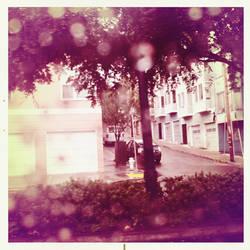 Rain Drops are Falling...