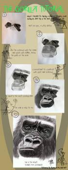 Gorilla tutorial