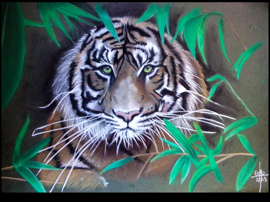 Wild, Tiger. by blueryuk