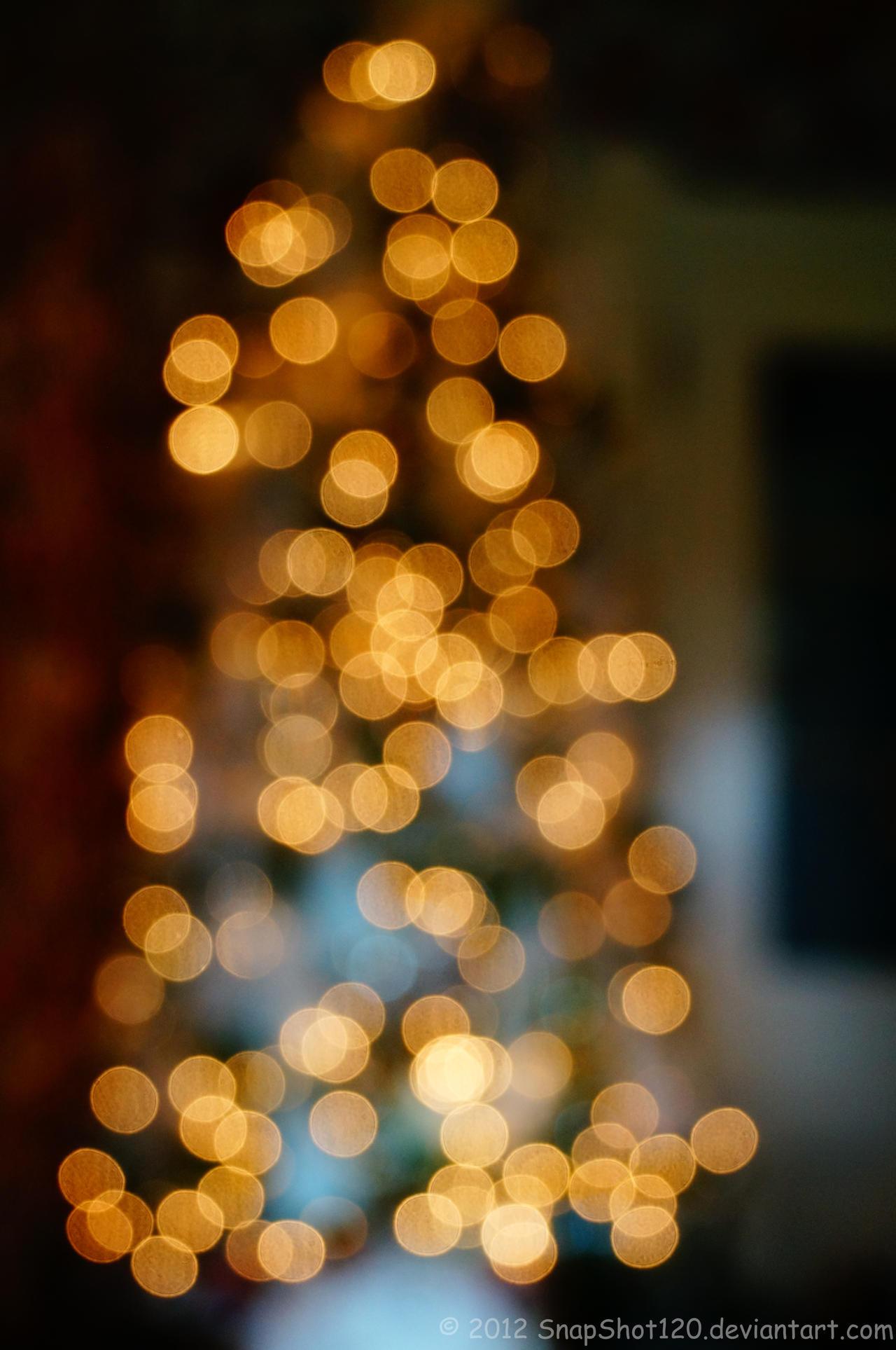 Christmas Tree Bokeh by SnapShot120