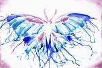 Wet Butterfly by Loliigo