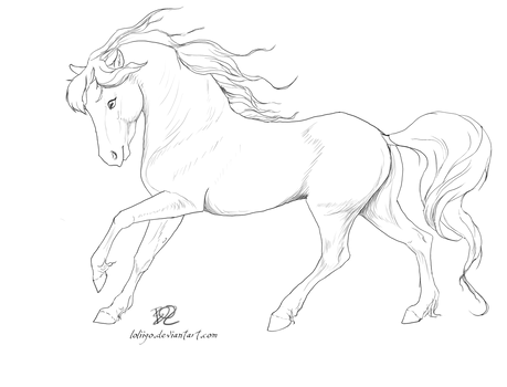 Free Lineart 03 - Galopp