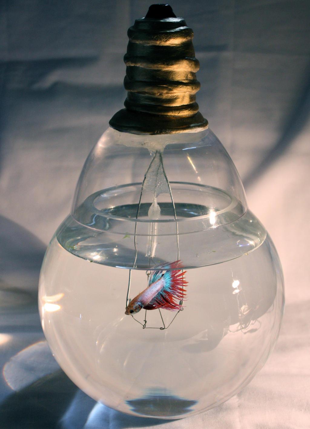 light bulb fish aquarium images. Black Bedroom Furniture Sets. Home Design Ideas
