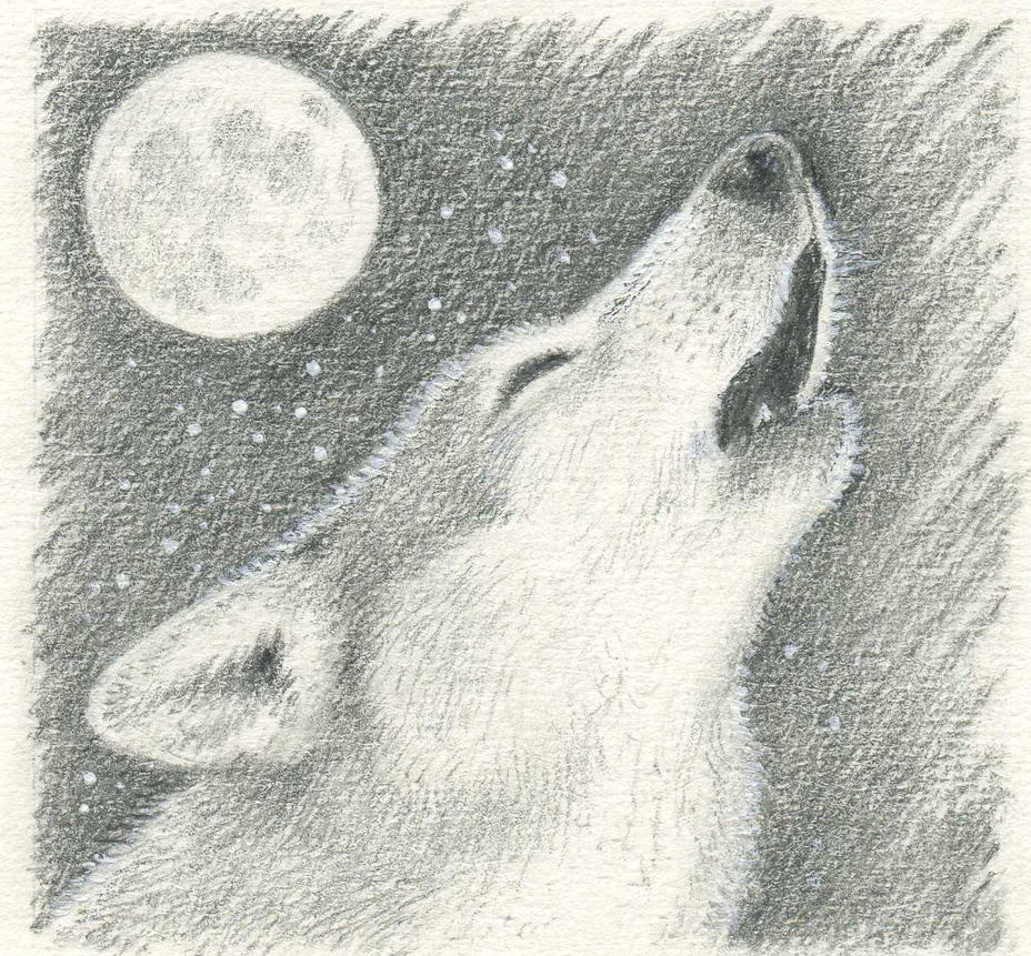 wolf howling at moon by pheonix2and2