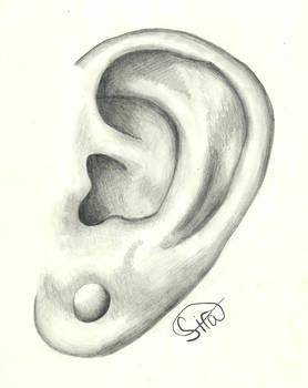 Graphite 5: I'm All Ears