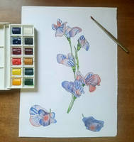WaterColor 1: Falling Flowers