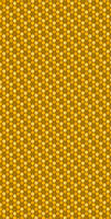 Bee Hive Custom Box BG