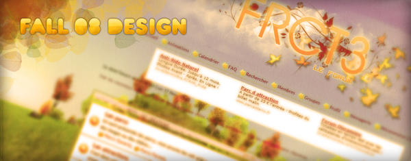 FRCT3 fall 08 design