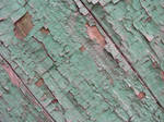 crusted mint paint 06 by synesthesea
