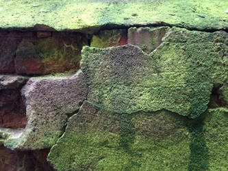 lime green brick wall 01 by synesthesea