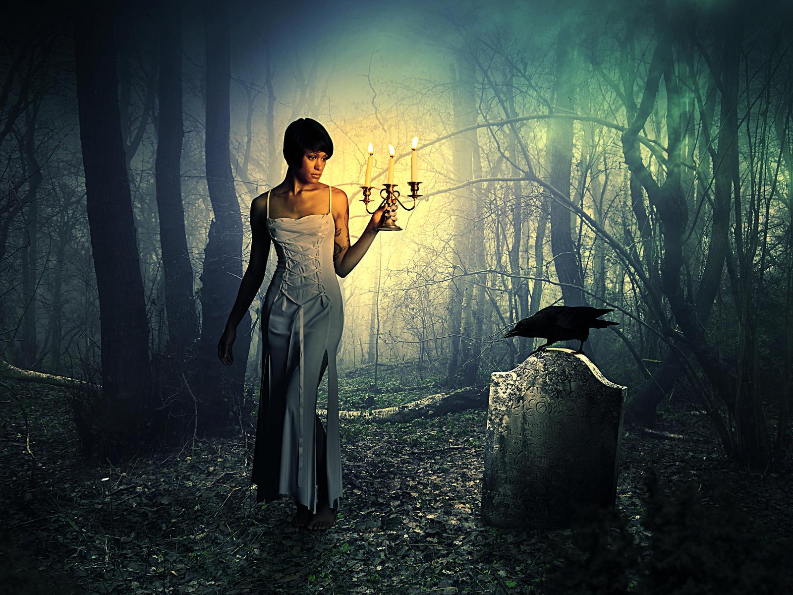 Dark Forest by ObnoxiousNox