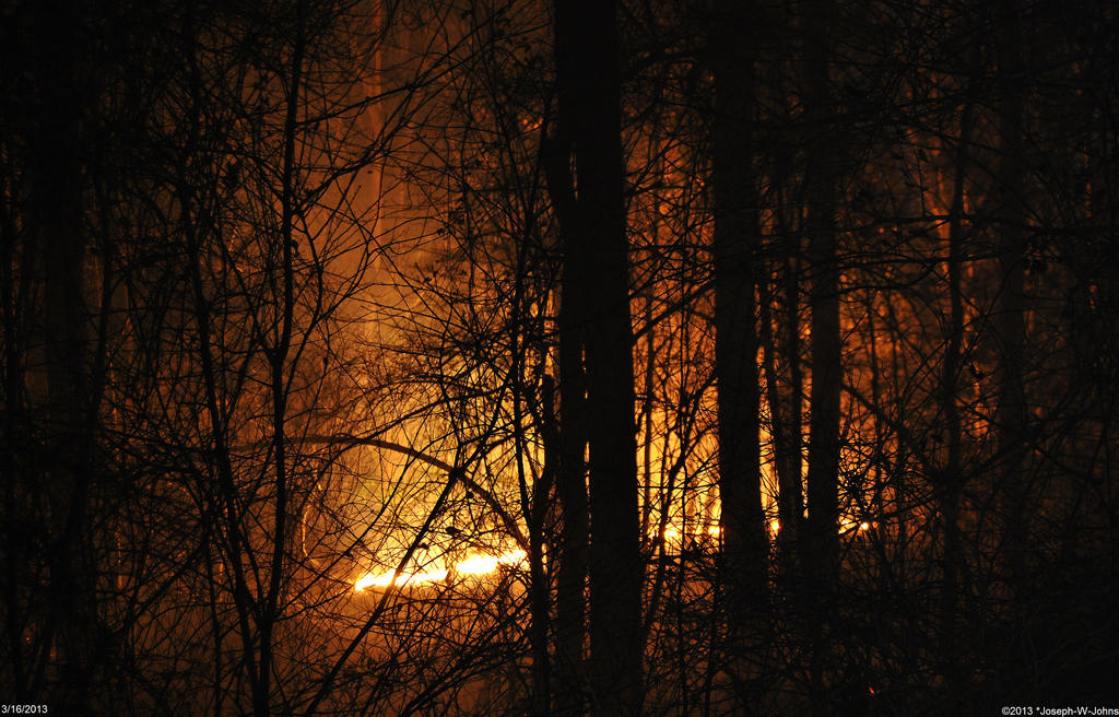 Woods on fire 1 by Joseph-W-Johns