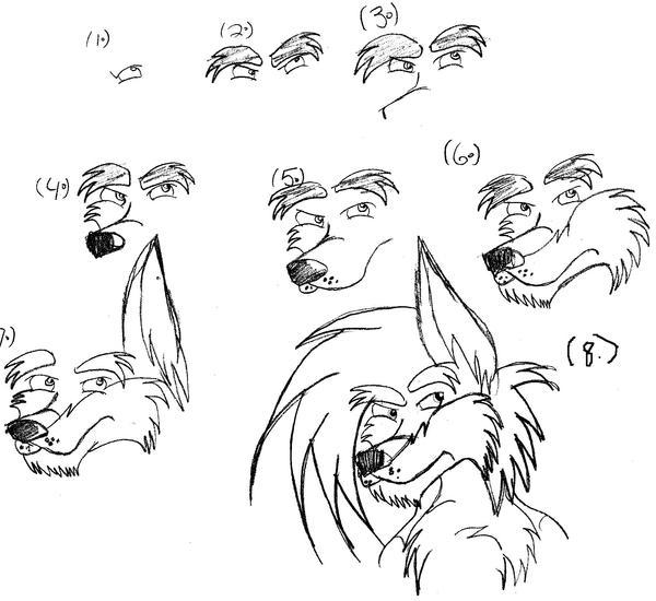 how to draw a dingo