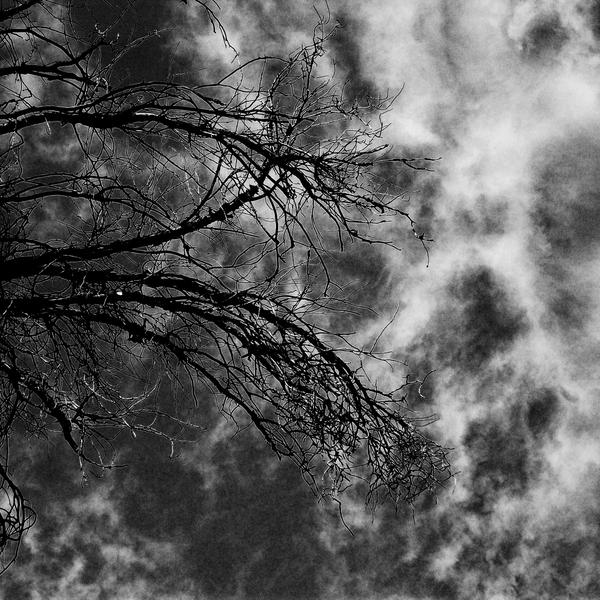 Slowly Dying Inside by mehrmeer