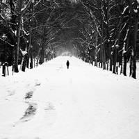 Ocean of loneliness by mehrmeer