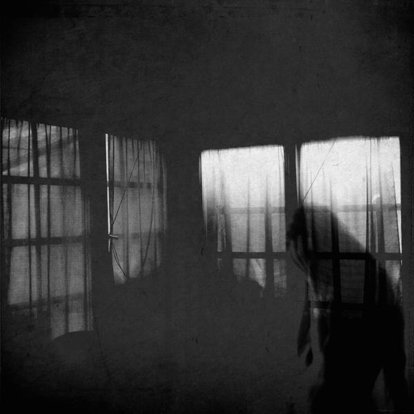 Passing Shadows by mehrmeer