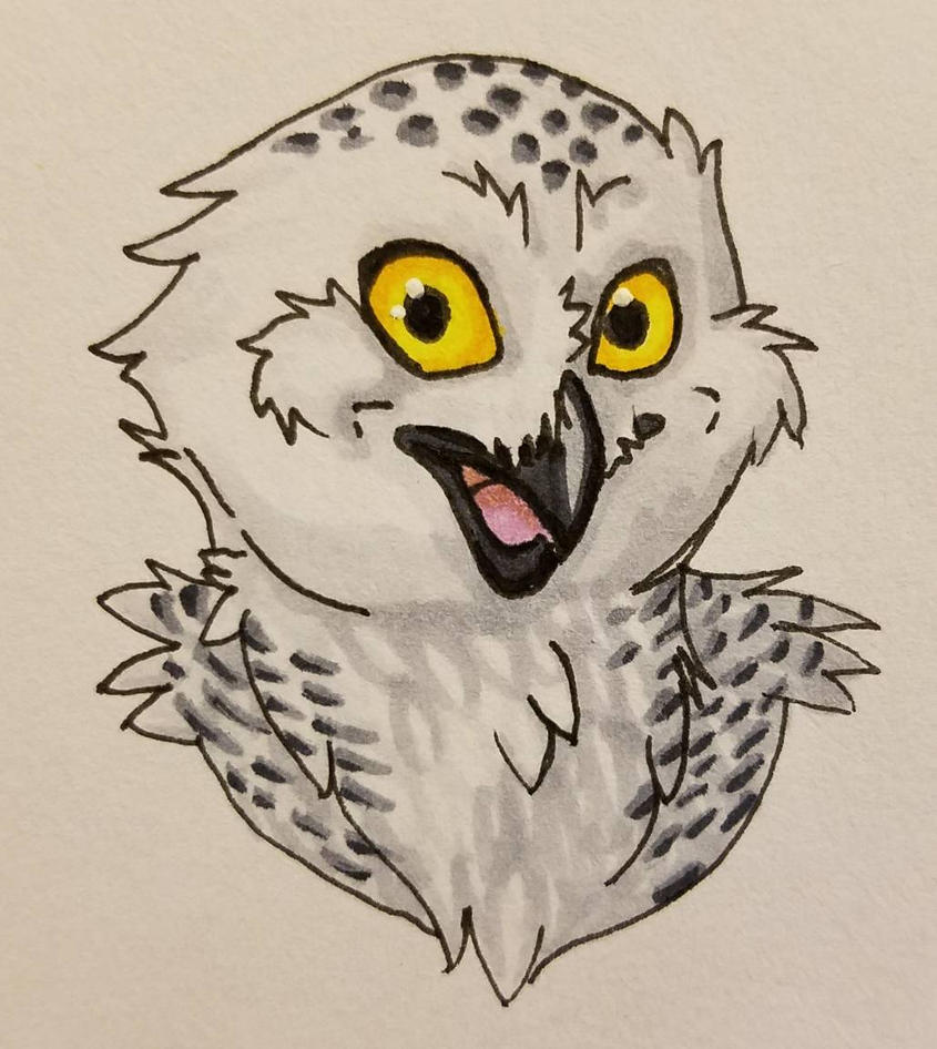 Happy Owl  by autumnewolf