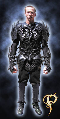 2nd Leather Armour Harness