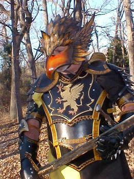 Gryphon Armor Client Photo 2