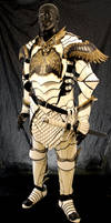 Paladin Armor by Azmal