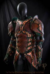 Warrior Rogue Leather Armor