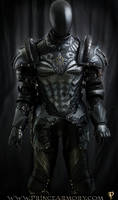 Dragon Crusader Cuirass/Upper Body