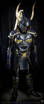 Warrior of Light Leather Armor