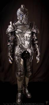 Dragon Crusader Full Suit