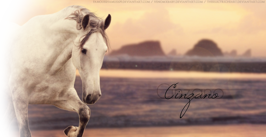 Cinzano by FamousShamus109
