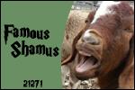 FS Patch by FamousShamus109