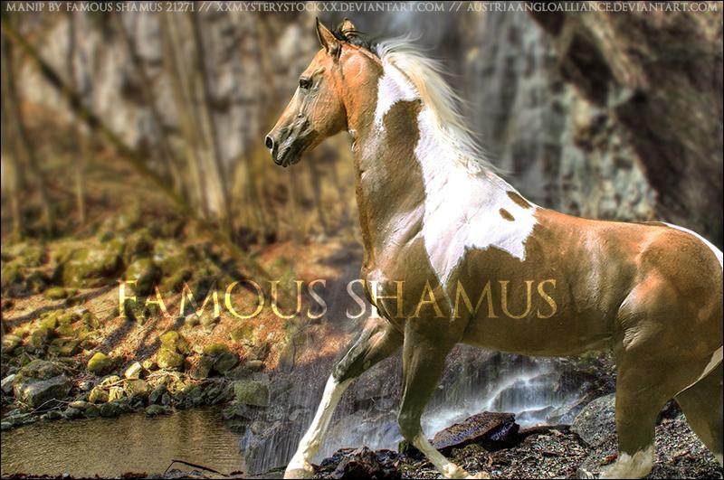 Paint by FamousShamus109