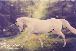 Roxxy Unicorns