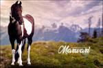 Roxxy Marwari
