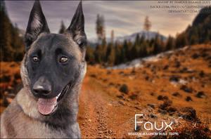 Faux by FamousShamus109