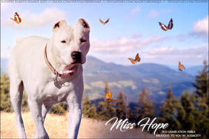 Miss Hope by FamousShamus109