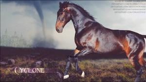 Cyclone by FamousShamus109