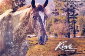 Kiwi by FamousShamus109