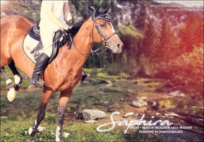 Saphira by FamousShamus109