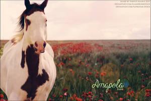 Amb Paint - Amapola by FamousShamus109