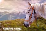 Carnival Appy - Carnival Gamez