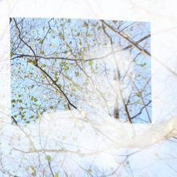 Window to springtime by Greyguardian