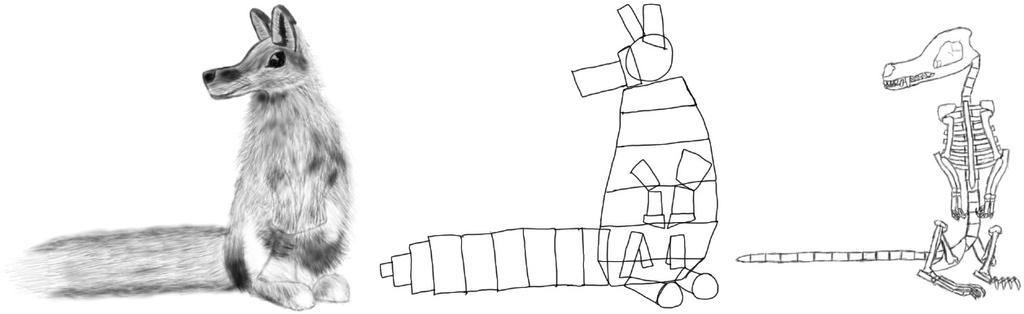 Fox Rabbit Hybrid Animal Geometry And Skeleton By Random123