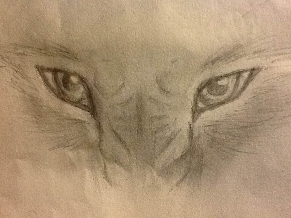 Angry wolf eyes by wolflover0925 on deviantart angry wolf eyes by wolflover0925 ccuart Image collections
