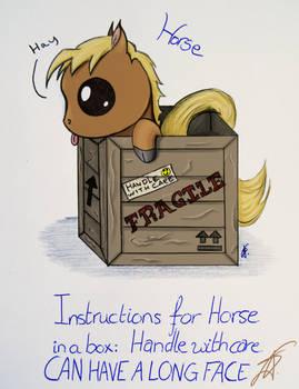 Horse in a Box