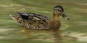 Mallard Hen I 2007 Duck series
