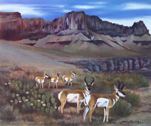 Canyon Flowers - Pronghorns by HOULY1970