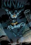 Batman Inc. Color Sample