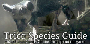Unofficial Trico Guide UPDATED