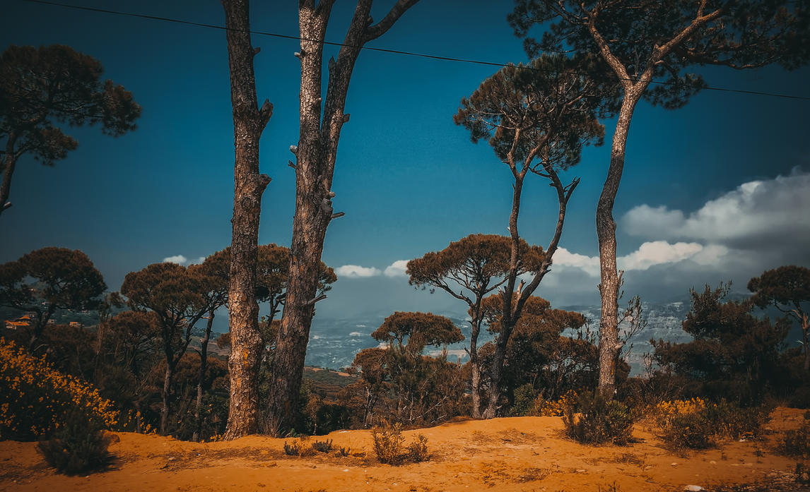Jezzine - Lebanon by yousefcia